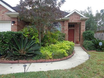 Single Family Home For Sale: 8414 Silver Lure Drive