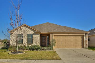 Katy Single Family Home For Sale: 2338 Grey Reef Drive