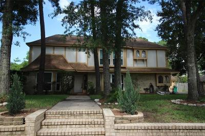 Baytown Single Family Home For Sale: 4100 Savell Drive
