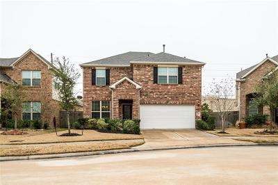 Katy Single Family Home For Sale: 28819 Chestnut Pines Dr