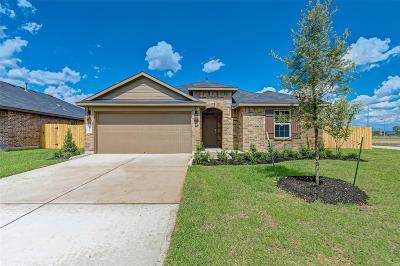 Rosenberg Single Family Home For Sale: 9223 Hemlock Drive
