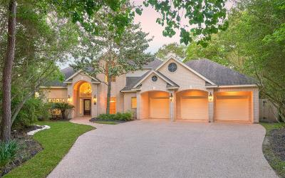 The Woodlands Single Family Home For Sale: 6 Twilight Plain Place