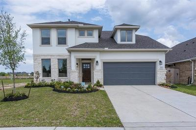 Tomball Single Family Home For Sale: 21722 Rose Maris Lane