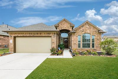 Texas City Single Family Home For Sale: 3223 Sunflower Drive