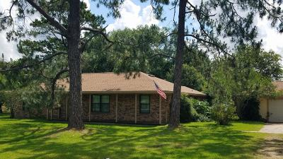Manvel Single Family Home For Sale: 5836 Tammy Drive