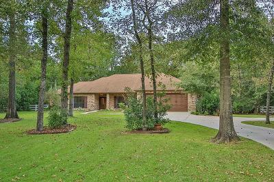 Montgomery Single Family Home For Sale: 395 Royal Navigator Road