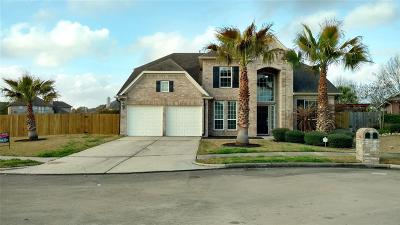 Harris County Single Family Home For Sale: 2329 Water Way