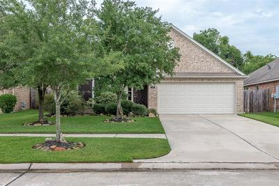 League City Single Family Home For Sale: 3211 Rock Brook Falls Lane
