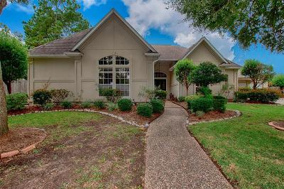 Houston Single Family Home For Sale: 1807 Royal Fern Court