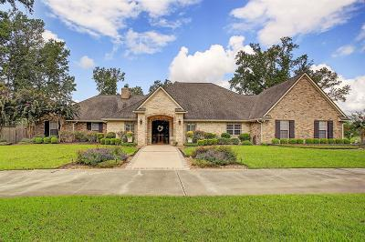 Single Family Home For Sale: 863 County Road 2003 S