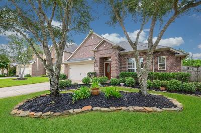 Fulshear Single Family Home For Sale: 28111 Indigo Creek Court