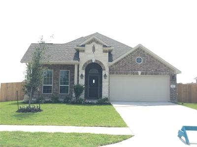 Baytown Single Family Home For Sale: 118 San Jacinto Drive