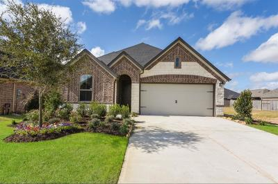 Fulshear Single Family Home For Sale: 2114 Great Egret Bend