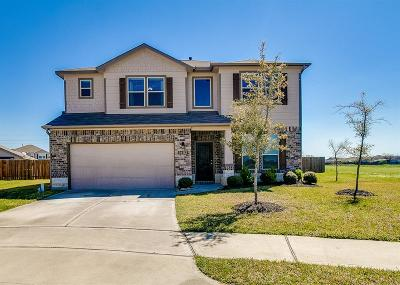 Katy Single Family Home For Sale: 5402 Casa Calvet Drive