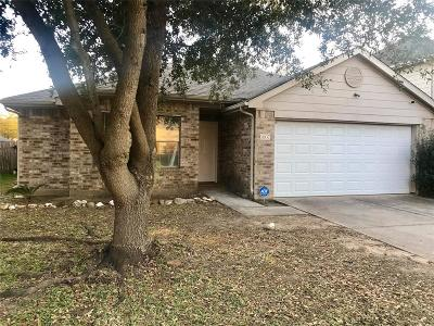 Houston Single Family Home For Sale: 6007 Fallmont Drive