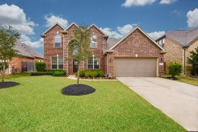 Richmond Single Family Home For Sale: 7811 Chinaberry Sky Lane