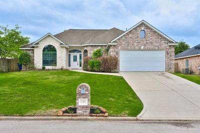 Willis Single Family Home For Sale: 12802 Point Aquarius Boulevard