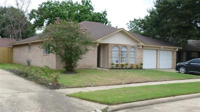 Katy Single Family Home For Sale: 20038 Crazy Horse Circle Dr