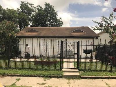 Houston Single Family Home For Sale: 2517 Cumberland Street