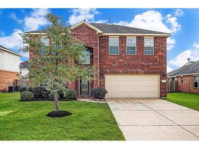 League City Single Family Home For Sale: 2519 Winged Dove Drive