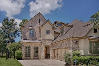 The Woodlands Condo/Townhouse For Sale: 70 N Knights Crossing Drive