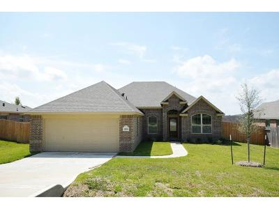 Willis Single Family Home For Sale: 13091 Skyline