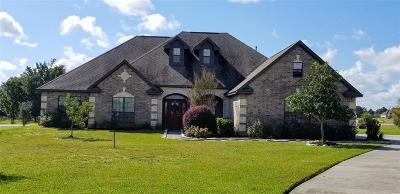 Montgomery Single Family Home For Sale: 201 Harbor Side Court