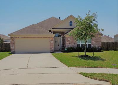 New Caney Single Family Home For Sale: 20703 Natural Way
