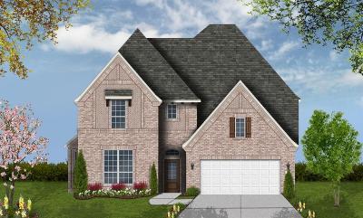 Harris County Single Family Home For Sale: 19618 Edwards Plateau Drive
