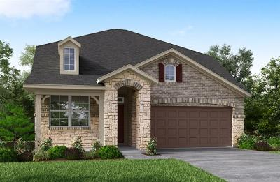 Galveston County, Harris County Single Family Home For Sale: 19323 Tobiano Park Drive
