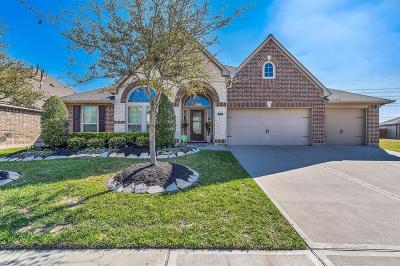 Katy Single Family Home For Sale: 3519 Antelope Creek Lane