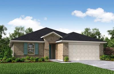 Rosenberg Single Family Home For Sale: 8703 Mugwort Drive
