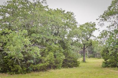 Fayette County Country Home/Acreage For Sale: 3351 W I 10 Frontage Road