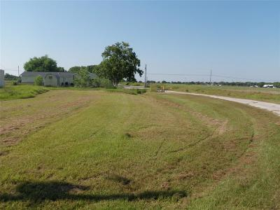 Blessing Residential Lots & Land For Sale: Walnut Street