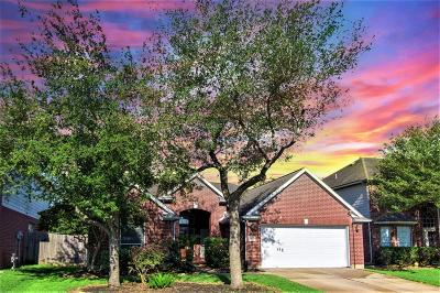 Sugar Land Single Family Home For Sale: 15022 White Forge Lane