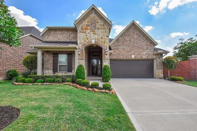 Riverstone Single Family Home For Sale: 3839 May Ridge Lane