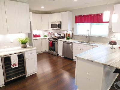 Houston Single Family Home For Sale: 4822 Creekbend Drive