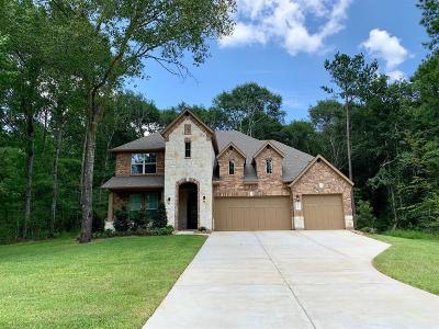 Conroe Single Family Home For Sale: 11206 Quiet Lake Drive