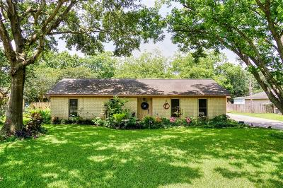 Katy Single Family Home For Sale: 2619 Patna Drive