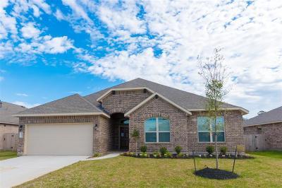 Houston Single Family Home For Sale: 18014 Van Berkel Lane