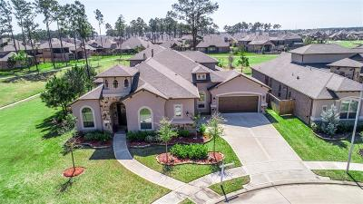 Tomball Single Family Home For Sale: 19022 Wild Thornberry Drive
