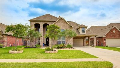 Tomball Single Family Home For Sale: 22618 Fanwick Drive