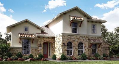 Single Family Home For Sale: 20154 E Hachita Circle