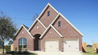 Pearland Single Family Home For Sale: 2802 Gable Point Drive