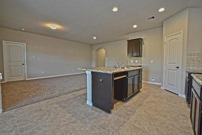 Rosenberg Single Family Home For Sale: 6318 Indigo Cliff Drive
