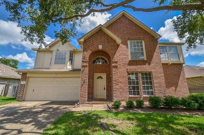 Katy Single Family Home For Sale: 3806 Starbridge Pointe Lane