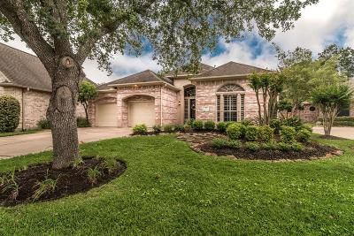 Houston Single Family Home For Sale: 3538 Emerald Falls Court