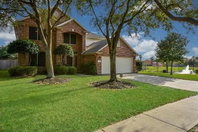 Houston Single Family Home For Sale: 10315 Summit Bridge Lane