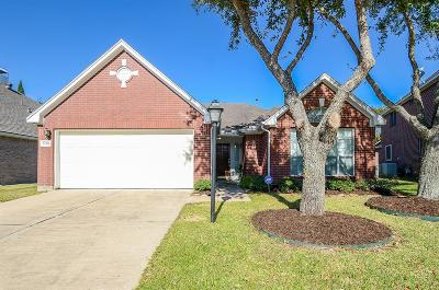 Houston Single Family Home For Sale: 12406 Shadowpoint Drive