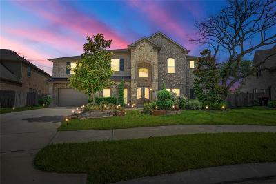 Fort Bend County Single Family Home For Sale: 19006 Grand Vista Springs Boulevard